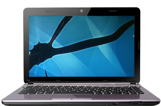 Laptop screen repair in Brampton