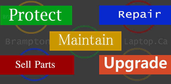 Protect, maintain, upgrade, sales and service